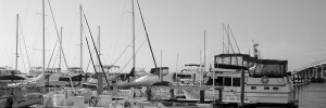 Porto Viro